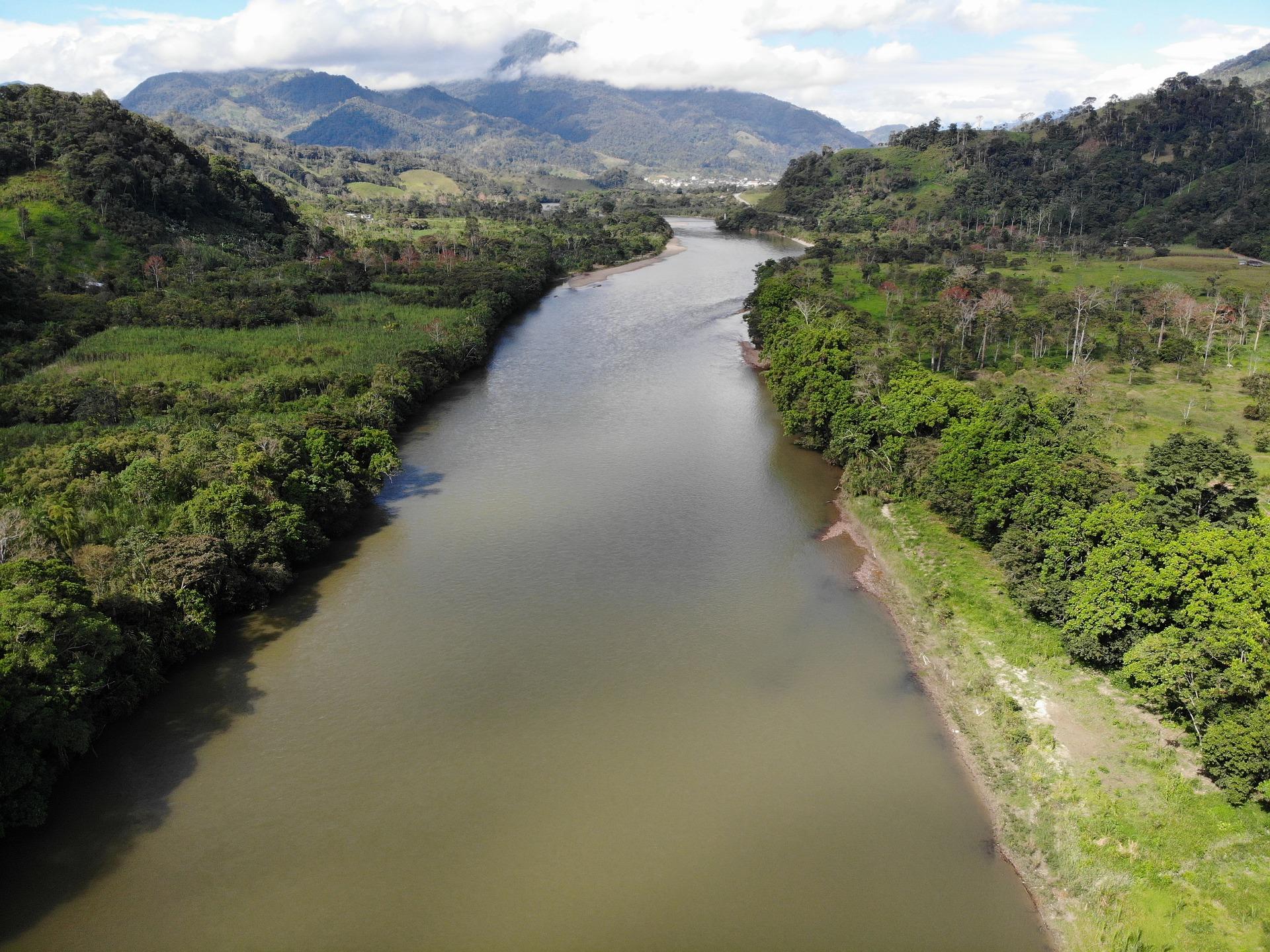 Conoce los cinco proyectos productivos sostenibles que beneficiarán a 1.100 familias de la Amazonía en Colombia